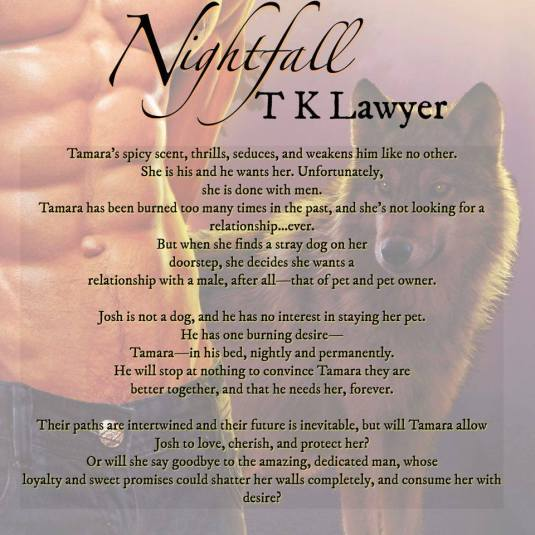 Nightfall book blurb light color