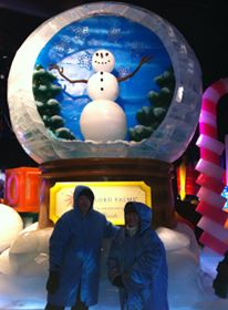 Ice Gaylord Palms15