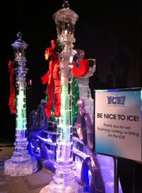 Ice Gaylord Palms5
