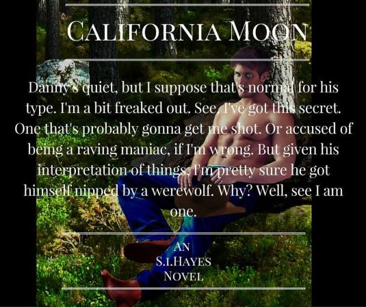 SI Hayes- California Moon teaser
