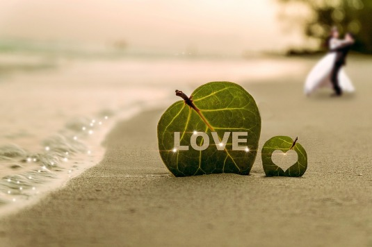 love-carved-in-leaf-on-beach