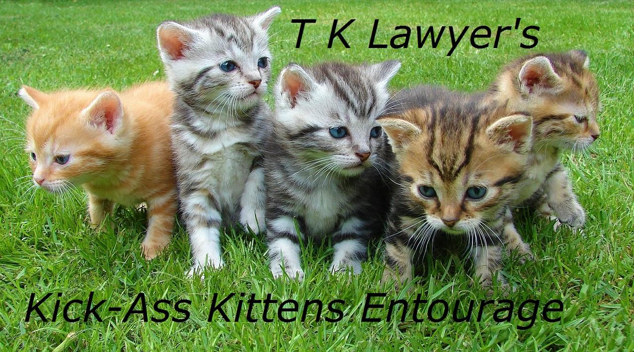 Kick-Ass Kittens Banner1